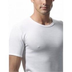 RAGNO Maglietta uomo girocollo manica corta SINTONIA 65457 lana fuori cotone sulla pelle BIANCO