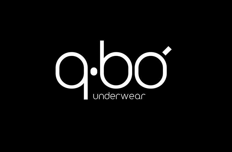 Risultati immagini per Q BO logo